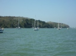 Solent Sailing School - How to Anchor - RYA Sailing School | Universal Sailing School | Scoop.it
