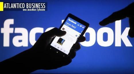 Pourquoi la France est incapable de développer une entreprise comme Facebook | Business & Marketing Management | Scoop.it