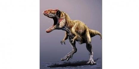 Un nouveau dinosaure carnivore identifié en Amérique du Nord | Aux origines | Scoop.it