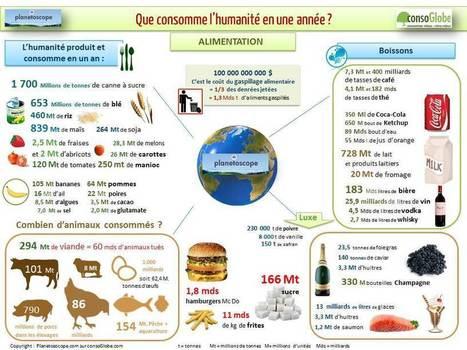 24 heures dans la planète conso - Que consomme l'humanité en une année ?   Nouveaux paradigmes   Scoop.it