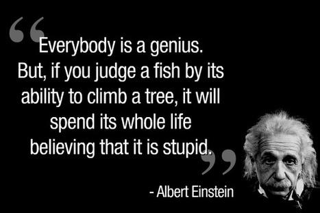 Wijze woorden van Albert Einstein   HoekAfTalent   Scoop.it