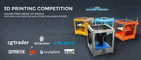 Got 3D Skills? Here's a 3D Printing challenge for you! | 3d Print | Scoop.it
