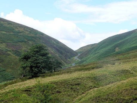 Forest of Bowland & Slaidburn stay, walks and things to do | Countryside affairs, walks, Fishing an local craft beers. | Scoop.it