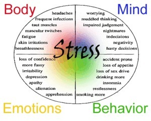 EFFECTS AND TYPES OF STRESS - Just for Hearts | Stress Free | Scoop.it