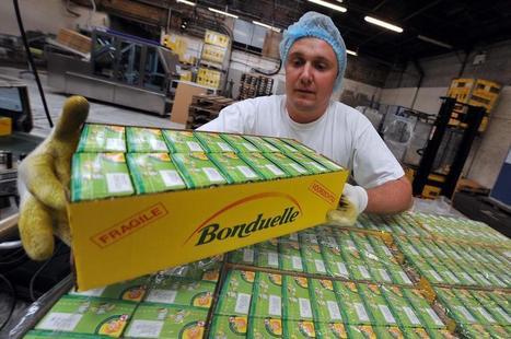 Depuis Villeneuve-d'Ascq, l'entreprise Bonduelle continue à croquer la planète | Coach de dirigeant, de manager et d'équipe | Scoop.it