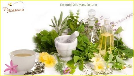 Citrus Oil Manufacturers – Boost Up Your Creativity with Citrus Essential Oils ~ Flavaroma Flavours | Salman Mansuri | Scoop.it
