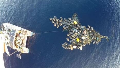 Rubbish islands forming - a habitat for some shellfish | Global Aquaculture News & Events | Scoop.it