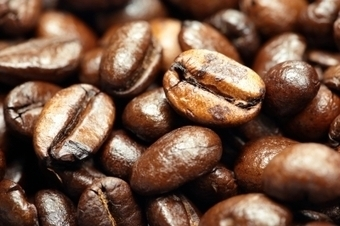Black Coffee: Why is Coffee Important in Africa? | Development in Africa | Scoop.it