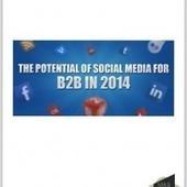 Infographie: Les réseaux sociaux, quel potentiel en B2B? | Tourisme, NTIC et Social Medias | Scoop.it