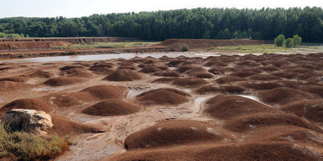 L'usine d'alumine de Gardanne continue de polluer le Parc marin des Calanques | Géographie : les dernières nouvelles de la toile. | Scoop.it