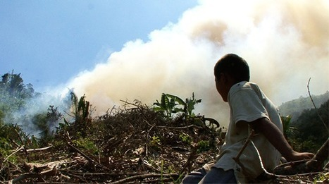 Up In Smoke - The Economist Film Project | Human Geography | Scoop.it