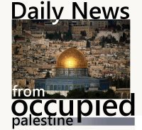 #PALESTINE NEWS | Aug 1, 2012 (Updated) | Occupied Palestine | Scoop.it