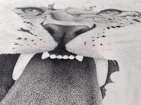 Xavier Casalta, illustrateur, typographe pointilleux... | #Graphisme #Webdesign #Communication #Publicité | Scoop.it