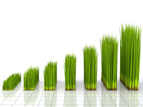 Sustainability vs. the growth conundrum | GreenBiz.com | Growth & Leadership | Scoop.it