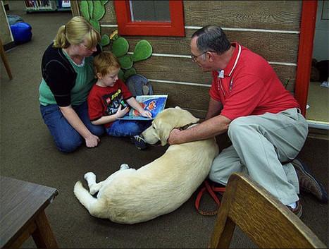 'Un amigo en casa': terapia asistida con perros para niños con discapacidad | Animales | Scoop.it