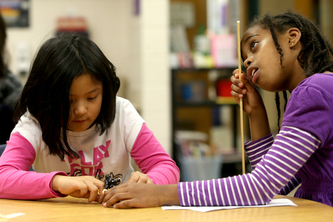 Rosemount schools have new route to gifted and talented   Gifted Education News   Scoop.it