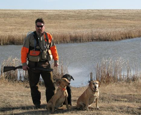 Bird dogs competition to be held in Tehachapi - Tehachapi News | Bird Hunting | Scoop.it