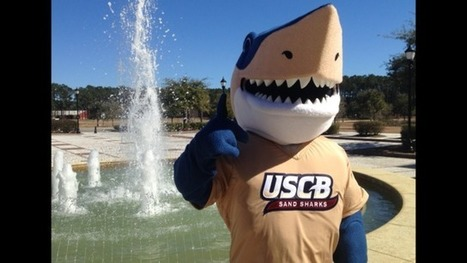 A USCB Shark Tale : Finnegan on Campus | Mascots | Scoop.it