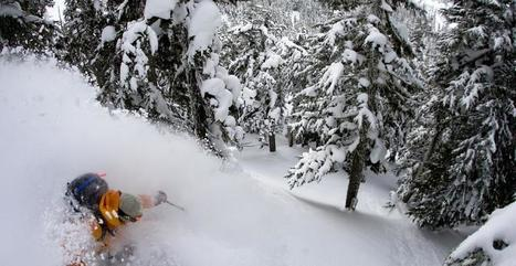 GoPro : Dave Treadway en ski freeride ! - meltyXtrem | GO PRO | Scoop.it