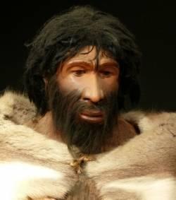 Le faciès de Néandertal : ce n'était pas une adaptation au froid | Aux origines | Scoop.it