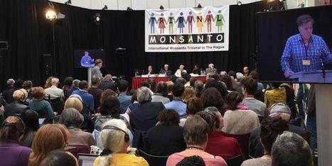 «Nous allons vérifier si les activités de Monsanto sont en conformité avec les règles de droit» | Home | Scoop.it