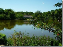 Morikami Japanese Gardens « Nancy's Notes From Florida | Japanese Gardens | Scoop.it