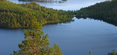 4. Case Study From Sweden | Boreal (Taiga Forest) | Scoop.it