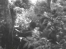Battlefield:Vietnam | Guerrilla Tactics | Infotext sources for middle school | Scoop.it
