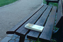 Connaissez-vous le bookcrossing ? | remember this | Scoop.it