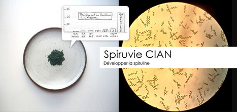 Spiruvie CIAN - Arizuka http://t.co/reoKZ5nVFt via... | Spiruvie | Scoop.it