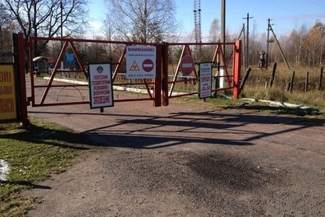Wildlife is thriving in the Chernobyl exclusion zone | News we like | Scoop.it