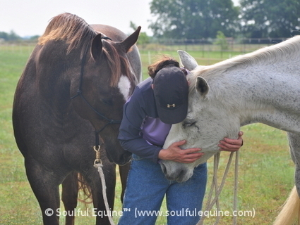 Revealed: How to Deepen Your Relationship with Your Horse | Soulful Equine™ | Bout it all | Scoop.it