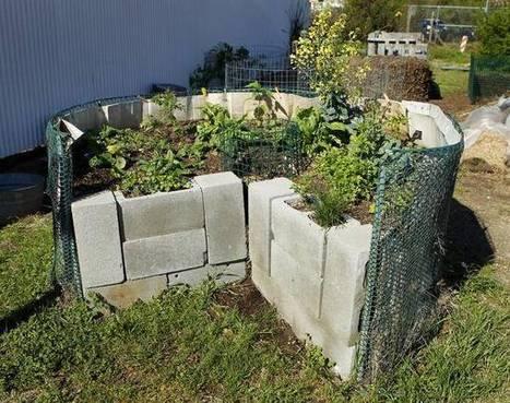 Unlock the secrets of keyhole gardens | Community Gardening Resources | Scoop.it
