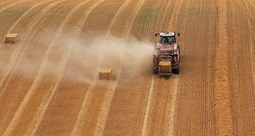 Les investisseurs détiennent toujours plus de terres agricoles | Questions de développement ... | Scoop.it