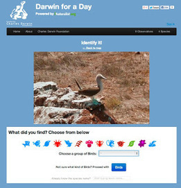 Google Lat Long: Explore the Galapagos and be 'Darwin for a day' on Street View | Биология | Scoop.it
