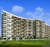 Concord Prima Domus Balewadi Pune by Concord Spaces | DiscountedFlats | Real Estate | Scoop.it