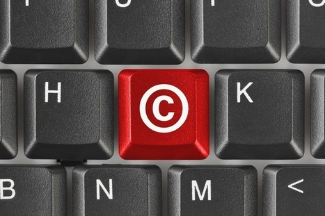 Government mulls expanded copyright safe harbour | Copyright news and views from around the world | Scoop.it