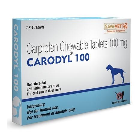 Carodyl (Carprofen 100mg) | Veterinary Medicines | Scoop.it
