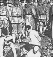 BBC NEWS | Asia-Pacific | Scarred by history: The Rape of Nanjing | Nanking + Holodomor | Scoop.it