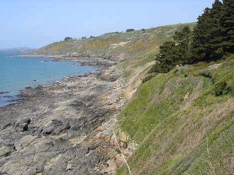 Erosion du littoral : une cartographie des côtés françaises est disponible | Territoires en transition, ESS et circuits courts | Scoop.it