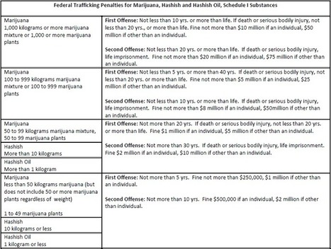 Federal Trafficking Penalties - DEA Chart | Addiction | Scoop.it