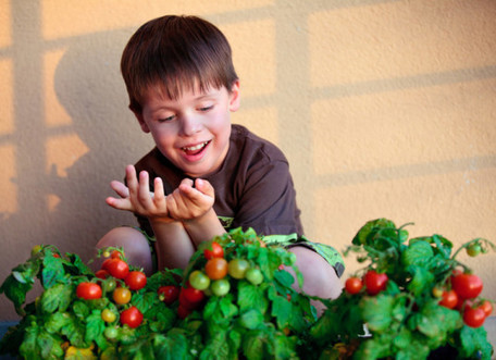 8 themed children's gardens that teach kids how to grow food & revel in nature   Sustainable Technologies   Scoop.it
