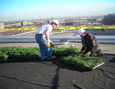Roofing: Strategic Advantages of Green Roofs on Campus | 21st Century Learning Environments | Scoop.it