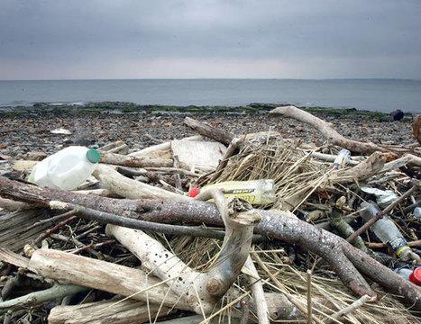Todos los océanos del planeta tienen residuos plásticos en su superficie | RedRestauranteros: Las Curiosidades | Scoop.it