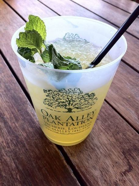 Tours by Isabelle: Sipping Mint Juleps on the Veranda | Oak Alley Plantation: Things to see! | Scoop.it