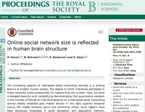 Online social network size is reflected in human brain structure | :: The 4th Era :: | Scoop.it