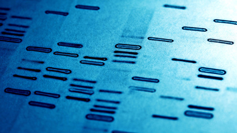 Engineers Have Invented a Programming Language to Build DNA | Technology news | Scoop.it