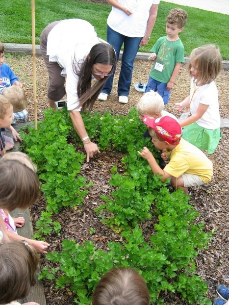 Lewis Ginter Botanical Garden » Blog Archive » Reflections on Allison Kiesler   Simply Grow Great Food   Scoop.it