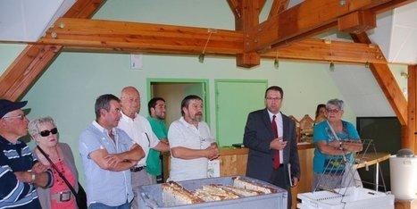 Première récolte de miel dans le rucher | Agriculture en Dordogne | Scoop.it