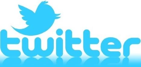 Twitter : Le déclin du réseau social ? - BuzzArena (Blog) | Marketing Digital et Internet | Scoop.it